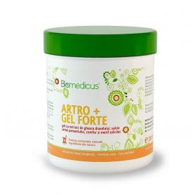 Artro Gel Forte 500ml, Biomedicus