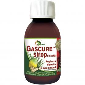 Gascure Sirop, 100 ml, Ayurmed