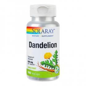 Dandelion (Papadie) 520 mg, 100 capsule, Secom