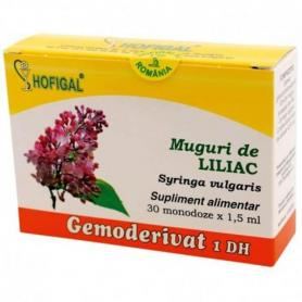 Muguri Liliac, 30 monodz, Hofigal