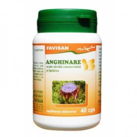 ANGHINARE 40cps FAVISAN