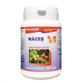 Maces 40 capsule Favisan