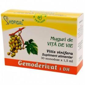Muguri de Vita de Vie gemoderivat 30 monodoze Hofigal
