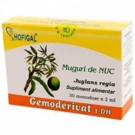 Muguri de Nuc Gemoderivat, 30 monodoze, Hofigal