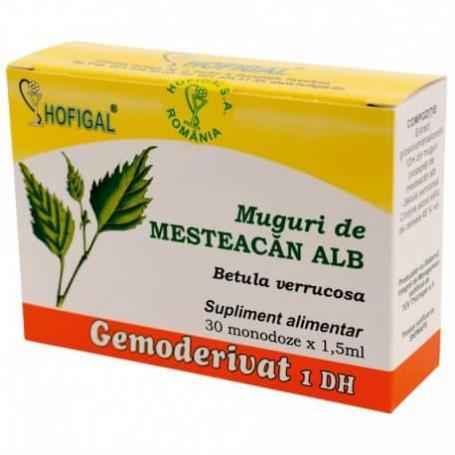 Muguri de Mesteacan Alb Gemoderivat, 30 doze, Hofigal