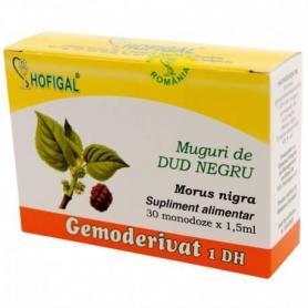 Muguri de Dud negru Gemoderivat, 30 monodoze, Hofigal