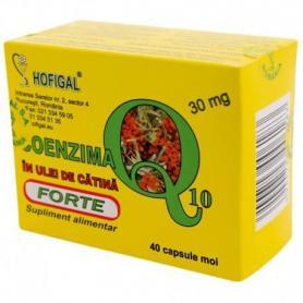 Coenzima Q10 in ulei de catina Forte 30 mg, 40 capsule, Hofigal
