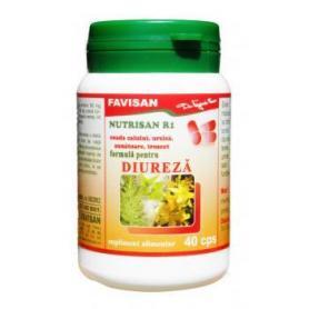 Nutrisan R1, 40 capsule, Favisan