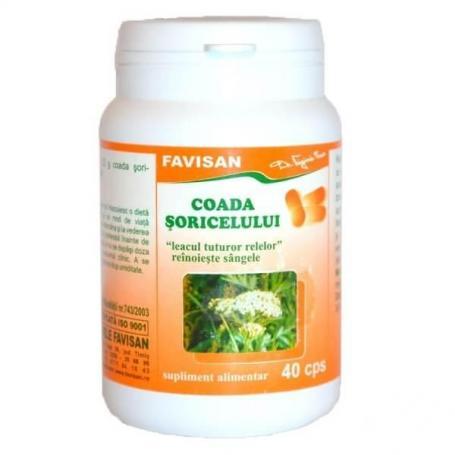 Coada Soricelului, 40 capsule, Favisan