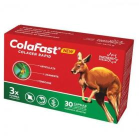 COLAFAST COLAGEN RAPID - GOOD DAYS THERAPY
