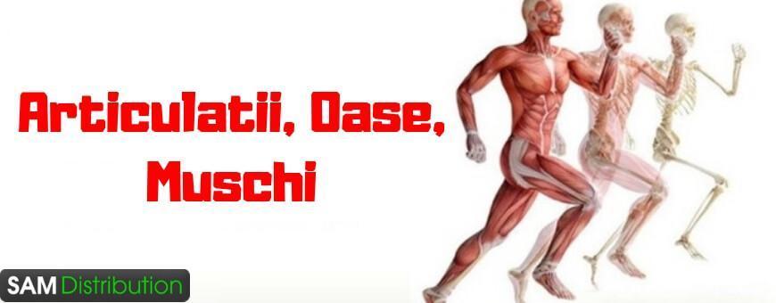 Produse si remedii naturiste Bio - Articulatii, Oase, Muschi