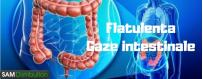 Flatulenta, gaze intestinale,balonare Produse,tratamente naturiste,produse naturisteFlatulenta,gaze intestinale,balonare