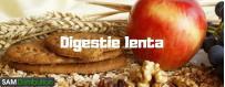 Remedii si medicamente pentru digestie lenta - tranzit intestinal lent