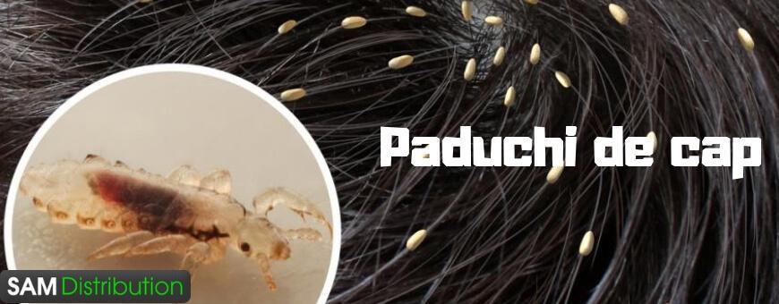 Paduchi de cap tratament naturist » produse pentru paduchi