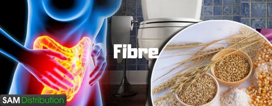 Fibre alimentare » Fibre pentru digestie
