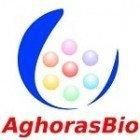 Aghoras Invent